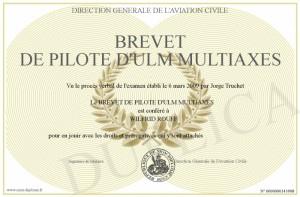 brevet pilote-ulm